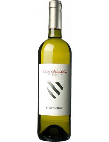 Pinot Grigio DOC Friuli Grave Conte Brandolini d'Adda 2019