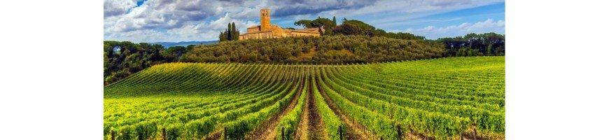 Vins rouges d'italie - Achetez et Vendez vos vins