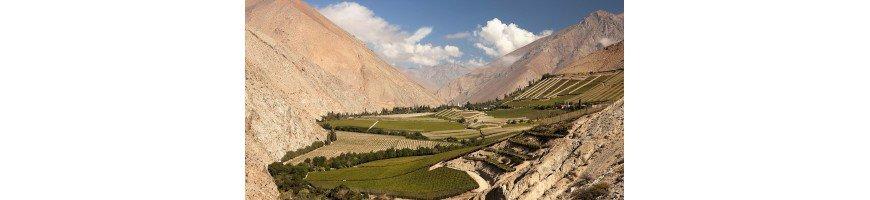 vin du chili La vallée de l'Aconcagua